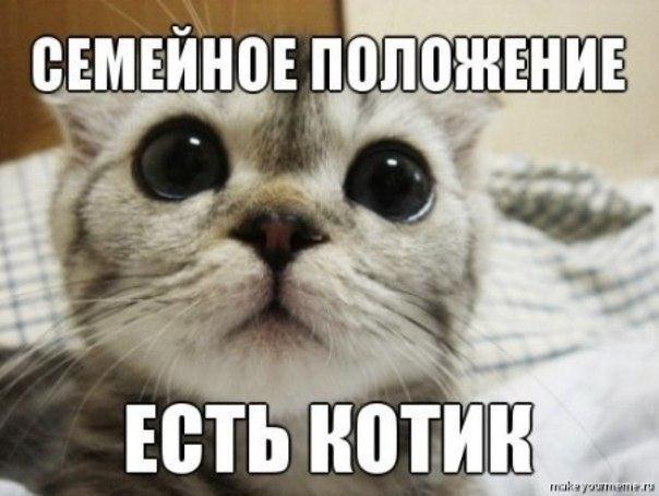 Меняю жену или шоу Русские свингеры ВИДЕО  Дневник