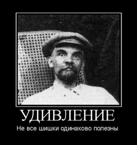 Личный блог Д А Кузьмичёва