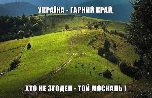 Успешная Украина для России немыслима, поскольку может подорвать авторитет системы Путина, - Брок - Цензор.НЕТ 2462
