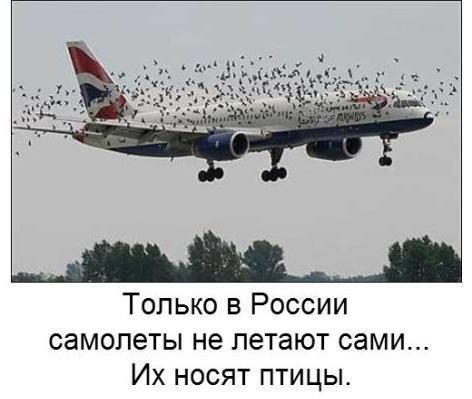 Украина продолжает контролировать воздушное пространство над Крымом, - глава Госавиаслужбы - Цензор.НЕТ 6798