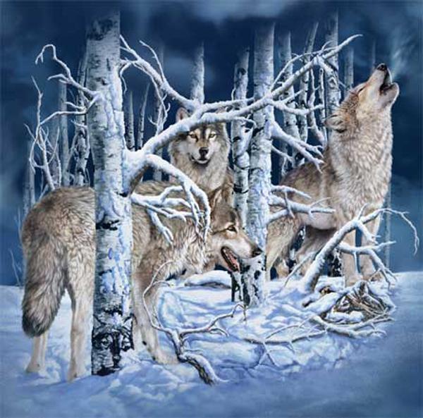 Посчитай всех животных на картинке ...: fun.tochka.net/pictures/80644-poschitay-vsekh-zhivotnykh-na-kartinke