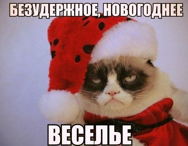 Нас ждет еще один Новый год безудержного веселья