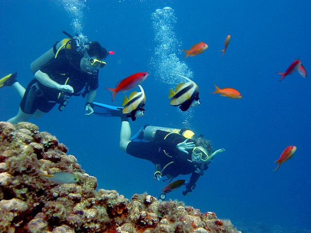 Червоне море (Єгипет)