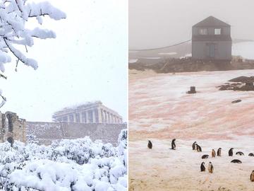 розовий сніг