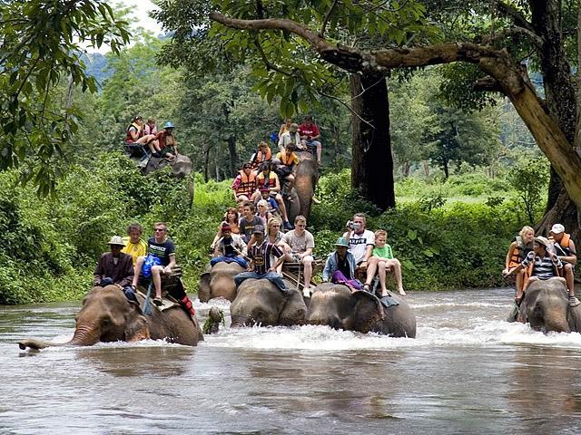8 найбільш незвичайних видів транспорту: Таксі зі слонів, Індія