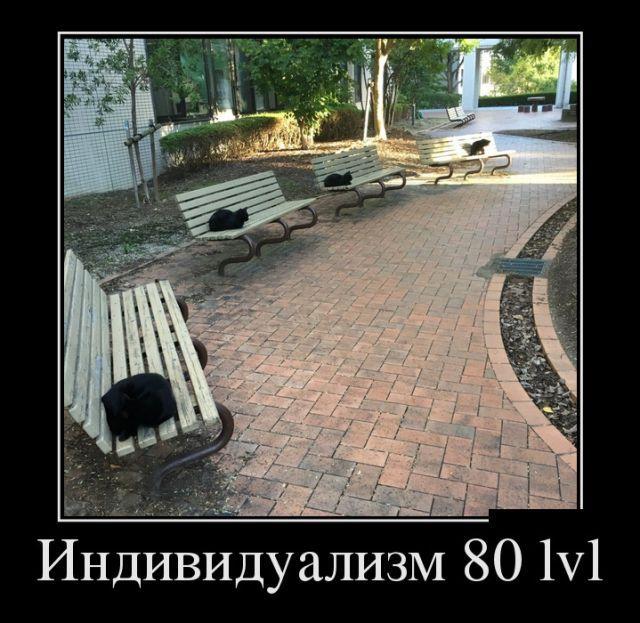c4ccd9f833d7122fc6aa040215e057ba_1.jpg