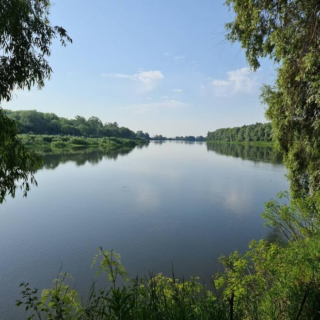 Черниговская область