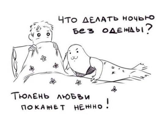 Комикс про тюленя любви