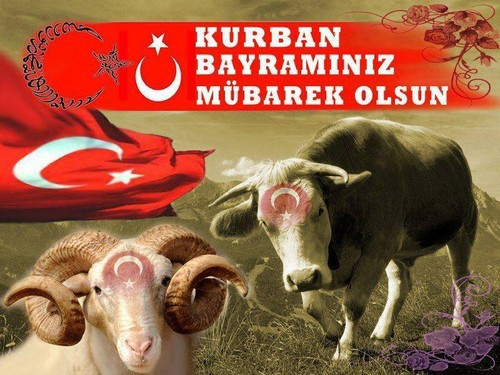 Изображение - На турецком поздравления с курбан байрамом 698_pozdravleniya_s_kurban_bayram_5