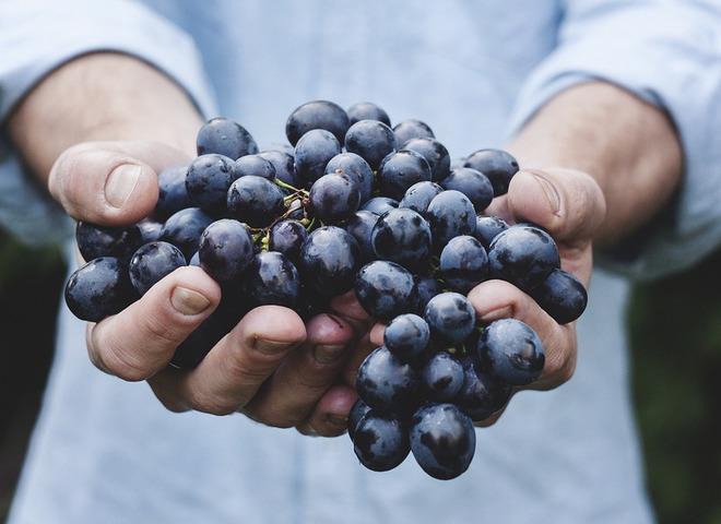 5 популярных мифов о правильном питании