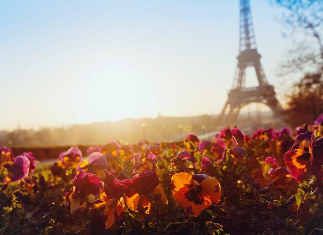 Французька весна 2017: відкриття