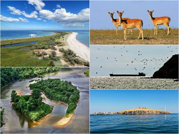 Куди поїхати влітку 2019: 5 найкрасивіших островів України