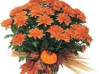 Оранжевый букетик на день рождения
