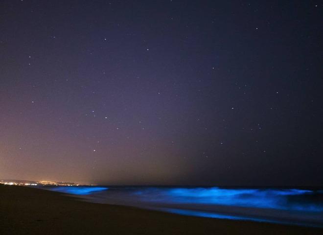 свечение океана