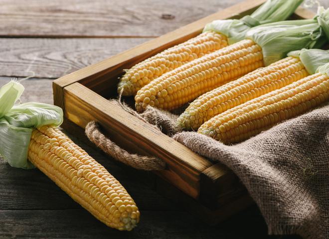 Як і скільки варити кукурудзу