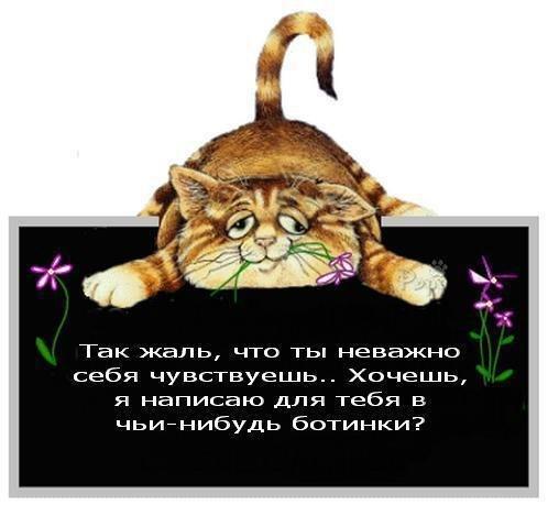 Оптимистичная открытка приболевшему другу от котэ