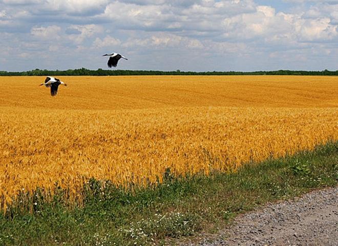 """Конкурс фотопремии """"Украина, которую мы любим"""""""