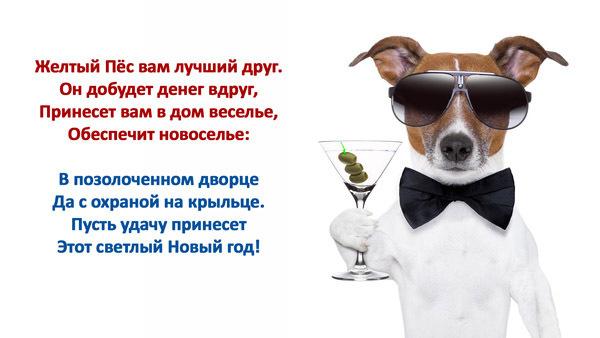 Пожелания на Новый год собаки