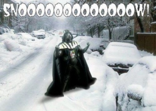 Не все рады снегу. Дарт недоволен