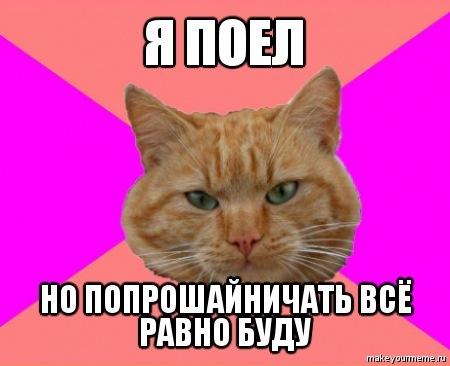 Истинный кот