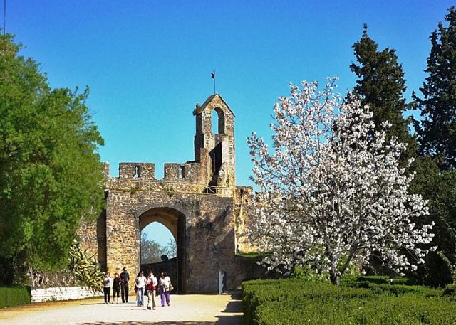 Замок Тамплієрів