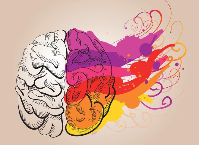 Руйнуємо міфи: 8 хибних думок про людський мозок