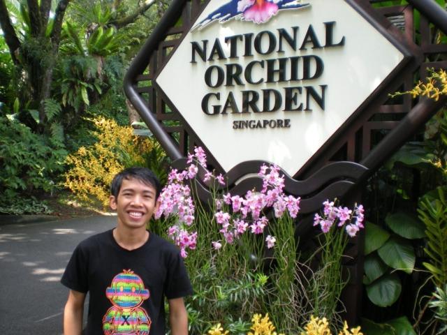 Достопримечательности Сингапура: Ботанический сад