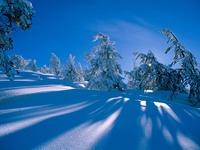 Кругом снег
