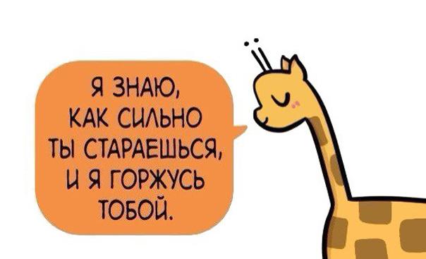 Анекдоты про знакомства через интернет 2