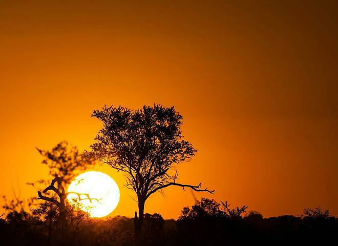 5 причин поехать в ЮАР в ноябре