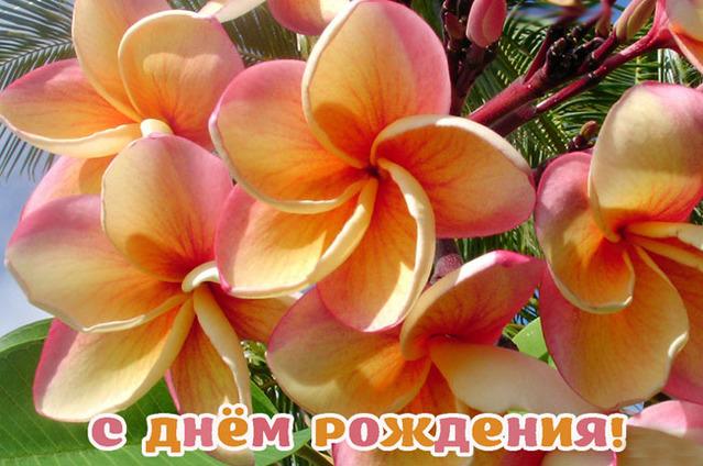 Милые цветочки на День Рождения