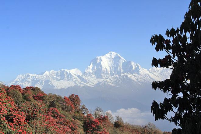 Трек в Непале