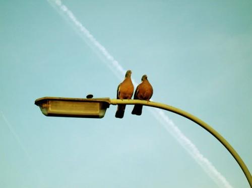 любовь - все просто, как 2х2