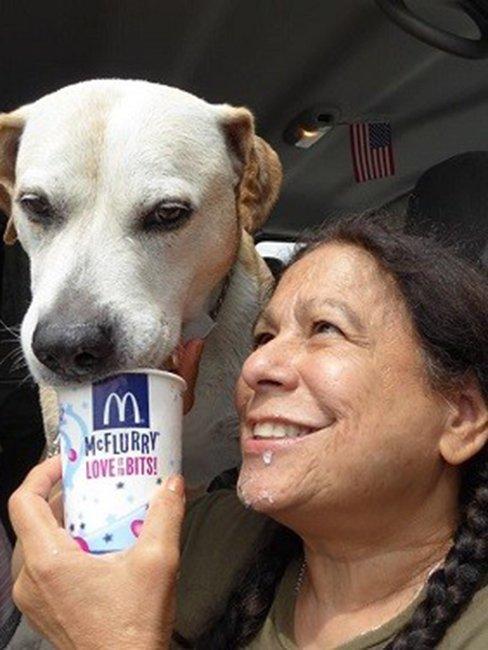 Собачки, которые обожают кофе