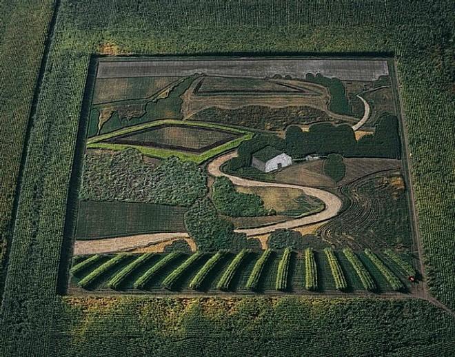 Самые большие картины в мире, нарисованные на полях