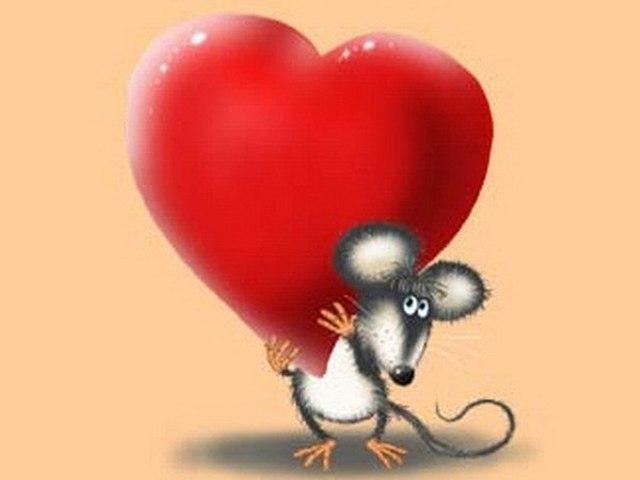 картинки с мышами люблю видео