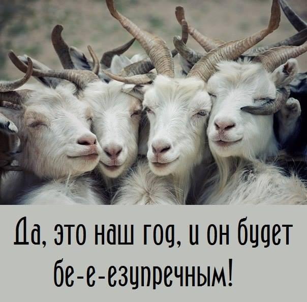 Картинка про год козы