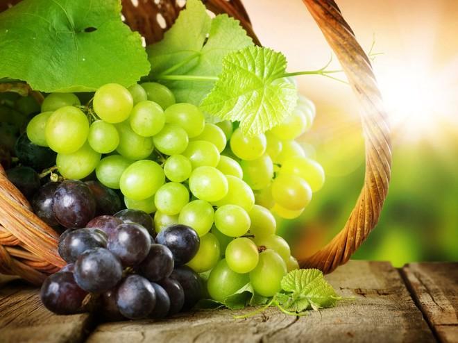 Технологію виготовлення вина показали гостям фестивалю на Закарпатті