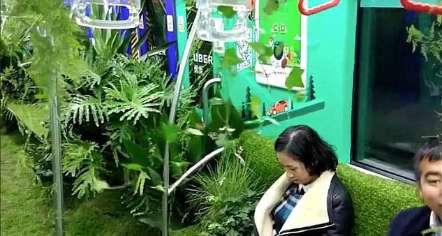 В китайском метро один из вагонов превратили в настоящий лес