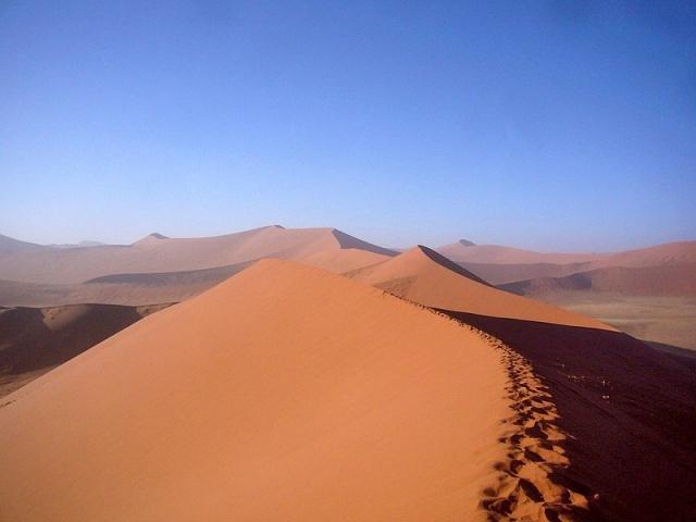 Мертвый лес в Намибии