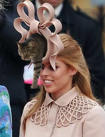 Фотожабы на королевскую свадьбу