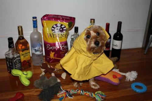 Как готовились в урагану Ирэн