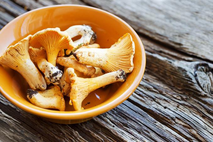 ТОП-5 блюд с лисичками