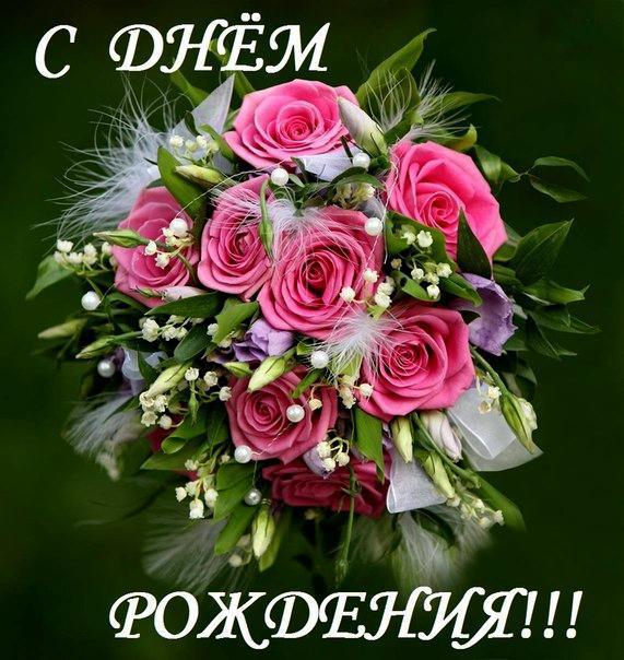 красивые фото цветы открытки