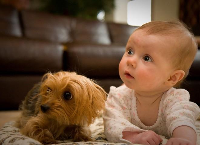 Здоровий малюк - щастя батьків