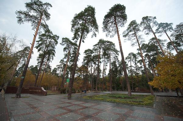 А какие места для пикника в Киеве знаешь ты?