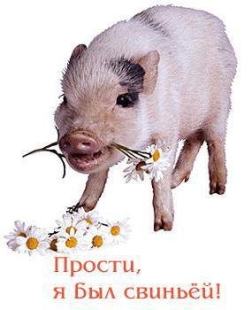 Прости, я был свиньей!