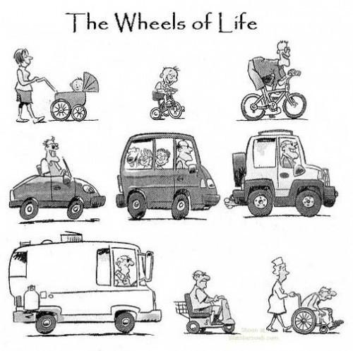 Колеса жизни