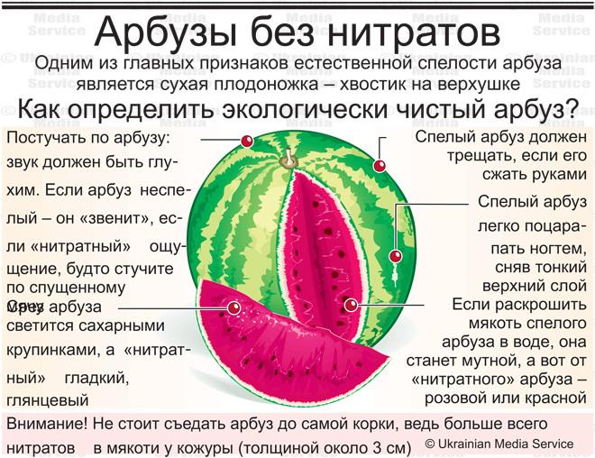 Как проверить арбуз на нитраты в домашних