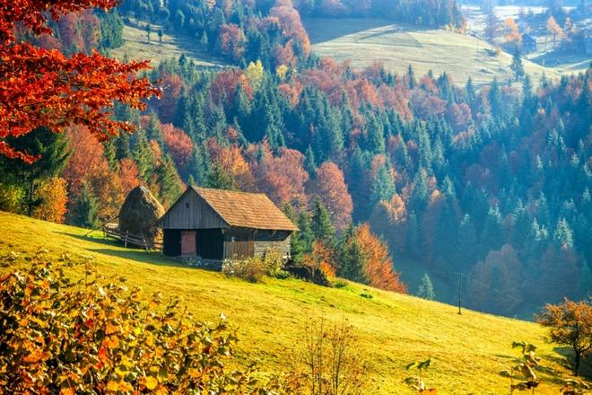Карпаты село